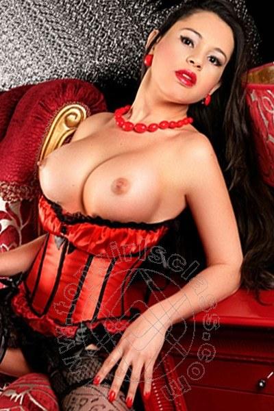 Natalia Gomes  MILANO 389 0164896